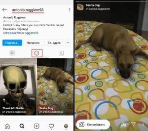 маска в инстаграм собака лежит